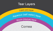 Tear Layers Diagram